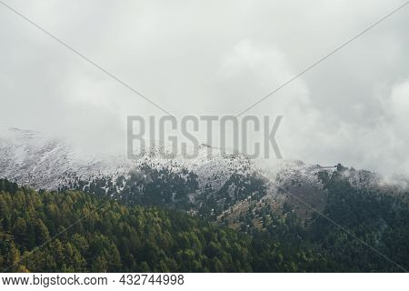 Atmospheric Autumn Landscape With Forest On Background Of High Snow-covered Mountain Ridge With Coni
