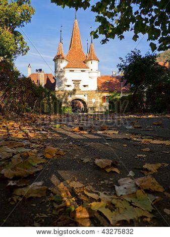 Ecaterina Gate, Brasov