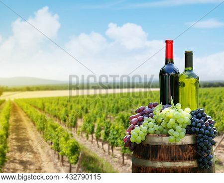 Red and white wine bottles and colorful grapes on wine barrel in front of landscape of vineyard. Sunny summer day. French countryside valley
