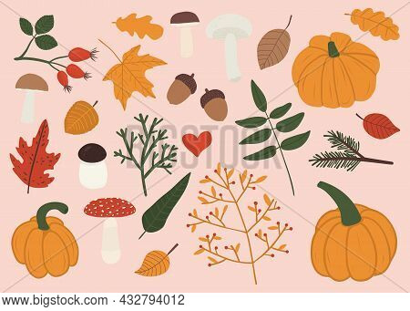 Vector Hand Drawn Set Of Autumn Things And Design Elements, Leaves, Pumpkins, Twigs With Berries, Ac