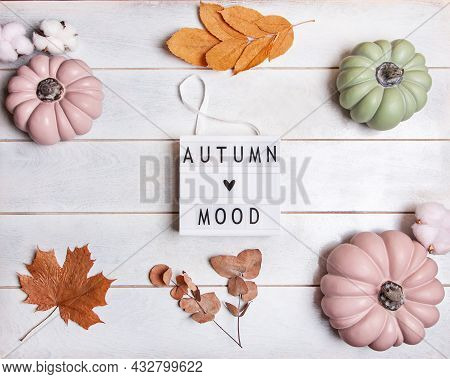Autumn Background With Pink And Green Pumpkins And Leaves In Pastel Shades, Lightbox With The Inscri