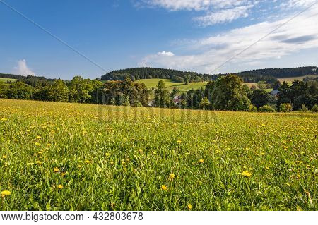 Summer Landscape With Flowering Meadow, Trees And Blue Sky With White Clouds - Czech Republic, Europ