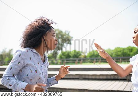 Two Women Confronting And Arguing With Each Other.