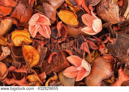 Flower Background Made Of Flower Petals, Nut Shells, Wood And Plants. Pink Shades. A Dried Flower.la