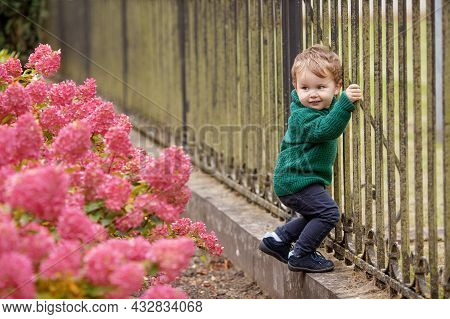 Little Cute Boy In The Park.  Lovely Little Boy In The Autumn Garden. Outdoor Activities For Childre