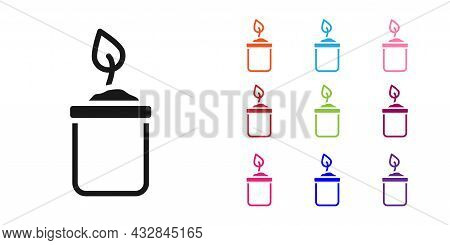 Black Sprout In Bottle Icon Isolated On White Background. Seed And Seedling. Leaves Sign. Leaf Natur