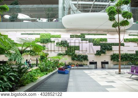 SINGAPORE, SINGAPORE - MARCH 2019: Luggage arriving among lush green plants in Changi Airport. Singapore Changi Airport, one of the largest transport hubs