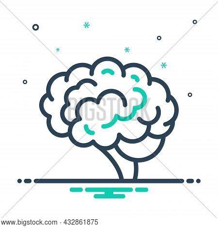 Mix Icon For Brain Head Cerebrum Psychology Neurology Human Memory Brainstorm Mind Anatomy Cerebral