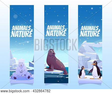Bookmarks With Penguins, Polar Bear And Seal On Floe In Sea. Vector Vertical Banners Of Animals In N