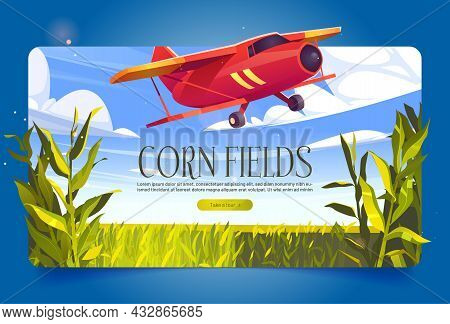Corn Fields Banner With Green Cereal Plants And Red Airplane. Vector Poster With Agriculture Cornfie