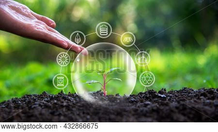 Ecology And Environment Earth.  Hand People Drop Water On Small Plant, Green Nature Ecology, Save Ea