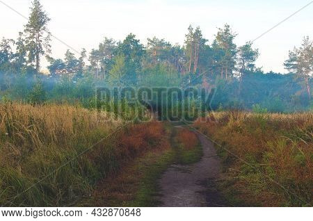 Scenic Autumn Nature Foggy Morning Landscape. Narrow Winding Path Through The Meadow Into The Forest