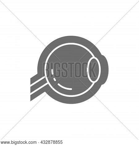 Eyeball, Optic Nerve Grey Icon. Isolated On White Background