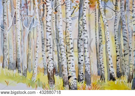 Watercolor Painting Colorful Autumn Trees. Semi Abstract Image Of Forest, Aspen Trees With Yellow -