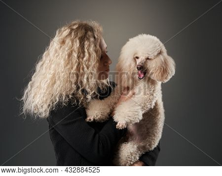 Curly Girl And Poodle. A Dog Similar To Its People. Portrait In Studio. Attitude, Love, Understandin