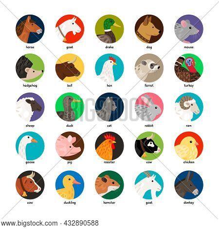 Big Set Of Different Avatars With Farm Animals