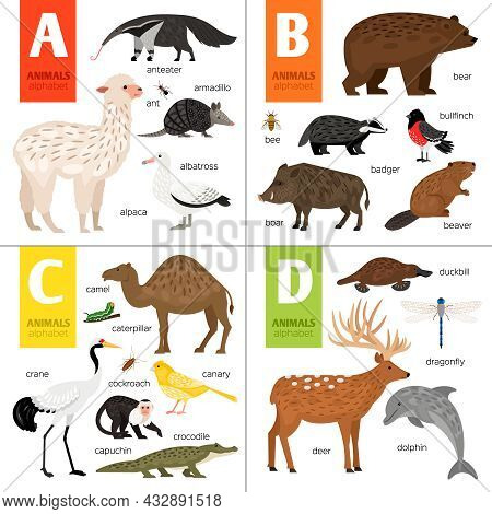 Abc Different Vector Animals. Cute Zoo Alphabet.