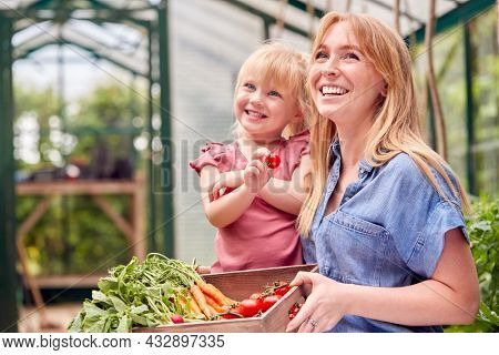 Mother And Daughter Holding Box Of Home Grown Vegetables In Greenhouse