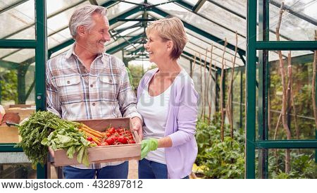 Senior Couple Holding Box Of Home Grown Vegetables In Greenhouse