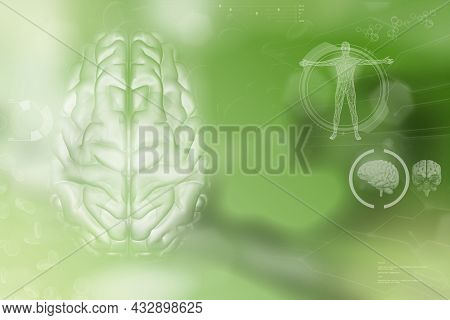 Medical 3d Illustration - Human Brain, Alzheimer Analysis Concept - Detailed Modern Background Or Te