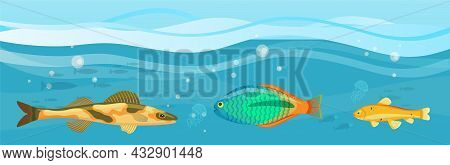 Underwater Ocean Fauna With Fishes, Seaweed And Shells On Sand. Ocean Bottom With Marine Life Reprse