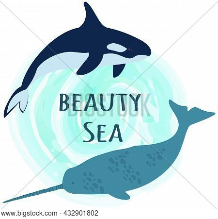 Large Predatory Marine Mammals, Whale, Narwhal. Predatory Animals Living In Ocean Swimming Around In