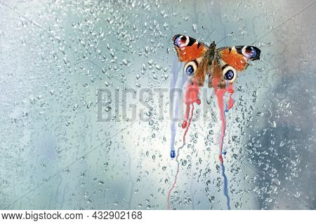 Peacock Butterfly (aglais Io) With Bleeding Wing Colors On A Rain Wet Window Pane, Metaphor For Enda