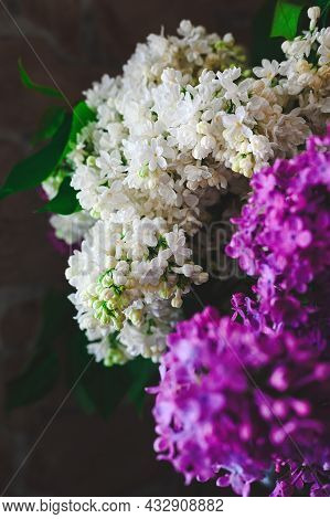 Bouquet Of White And Purple Lilacs Close Up