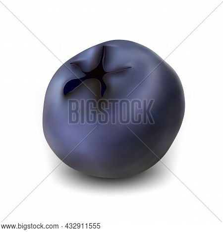 Blueberry Natural Vitamin Season Berry Vector. Juicy Blueberry Bio Food Product. Fresh Diet Eatery N