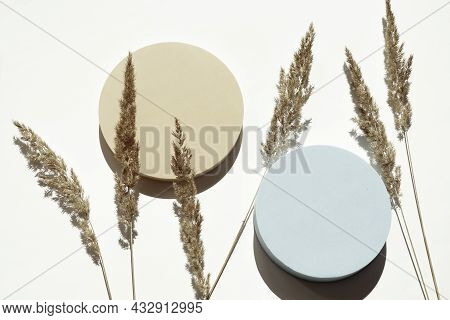 Two Empty Pastel Round Platform Podium For Cosmetics Or Products And Dry Grass Plant On White Backgr