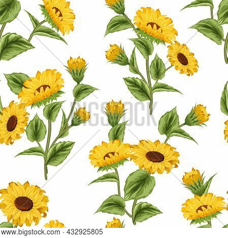 Pattern From Sunflowers On A White Background.yellow Sunflowers With Green Leaves In A Seamless Vect