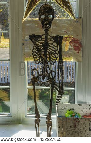 Toronto, Ontario, October 2020 - A Decorative Human Skeleton Set By A Window Looking Outside In Prep