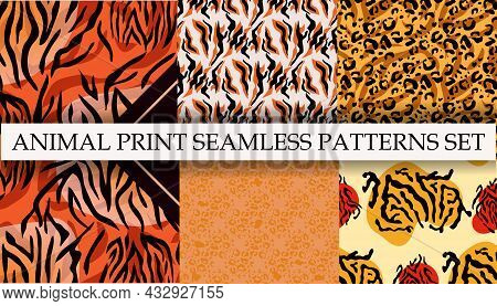 Set Of Jaguar, Tiger, Guepard,  Leopard Abstract   Beautiful  Seamless Patterns  In Different Colors