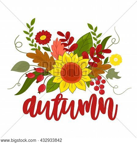 Vector Illustration Autumn Composition With Flowers Sunflower, Viburnum, Rose Hip And Lettering