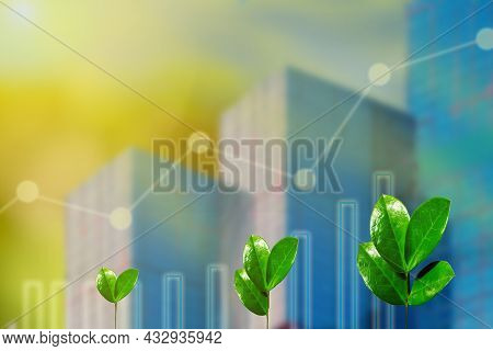 Sprouts Of Young Plants On Business Background With Graphs And Charts. Business Development Growth,