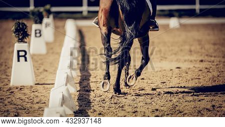 Equestrian Sport. The Legs Of A Dressage Horse Galloping, Rear View. Hooves With Horseshoes Of A Run