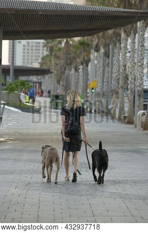 Tel Aviv, Israel - August 19th, 2021:a Woman Walking With Two Large Dogs On The Lahat Promenade, Nea