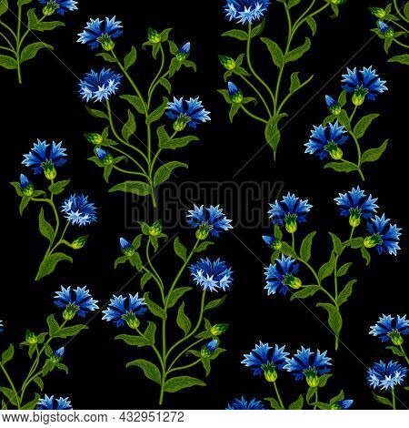 Vector Pattern Of Cornflowers.bouquets Of Cornflowers On A Black Background In A Colored Seamless Pa