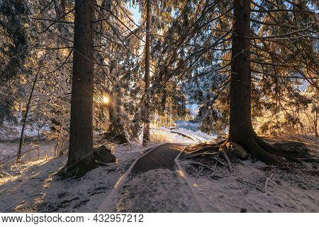 Cold Winter Morning At The Zelenci Lake In Kranjska Gora, Slovenia.