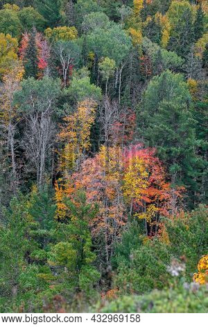 Deciduous forest in early autumn time along Brockway mountain drive in Michigan upper peninsula