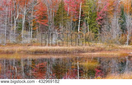 Colorful autumn trees with reflection in water at Deer lake in Michigan upper peninsula
