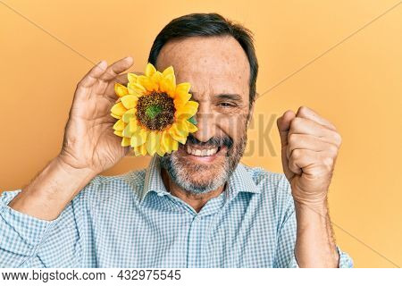 Middle age hispanic man holding sunflower over eye screaming proud, celebrating victory and success very excited with raised arm
