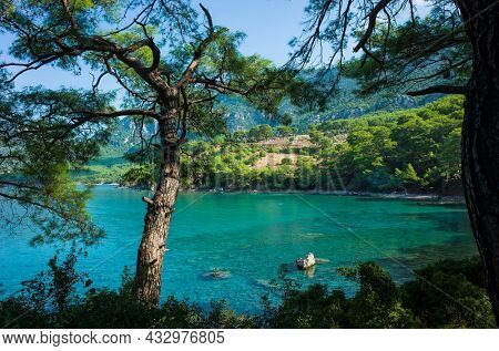 Picturesque turquoise water of Mediterranean sea photo framed in pine trees, Nature of Turkey