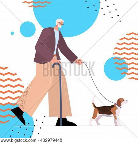 Senior Man With Cane Walking With His Little Dog Grandfather Relaxing With Pet Full Length