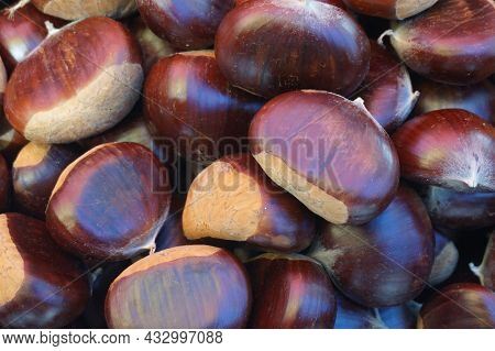 Background Of Chestnuts, Close-up Fresh Raw Chestnuts On Market Stand.