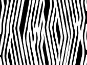 Abstract background of a zebra print . poster