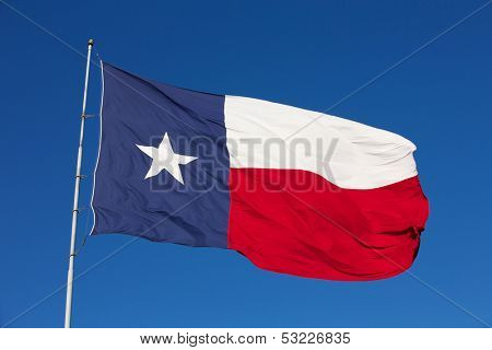 State Flag of Texas on a Windy Day