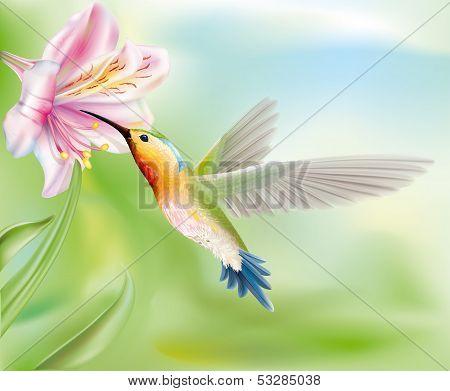 Hummingbird In The Flower