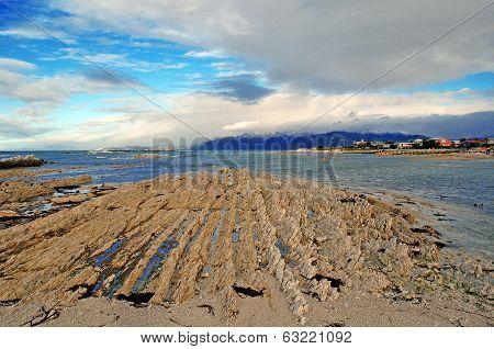 Rugged Shoreline in Kaikoura, New Zealand