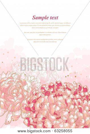 Romantic background with chrysanthemum